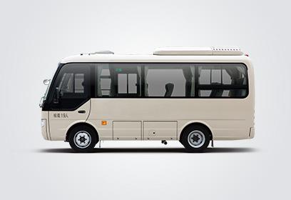 ZK6609D