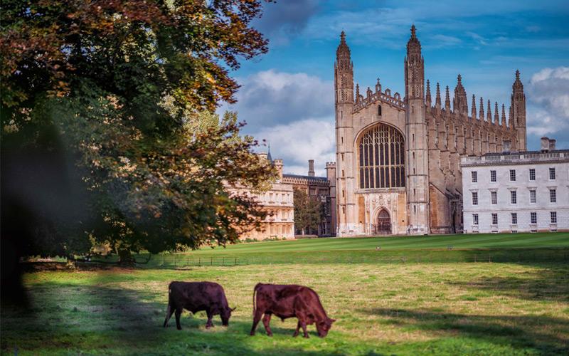 宇通中欧文化巴士之旅走进英国剑桥大学
