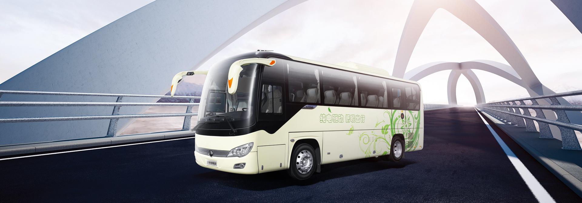8-E9(ZK6906BEVQ)公路新能源